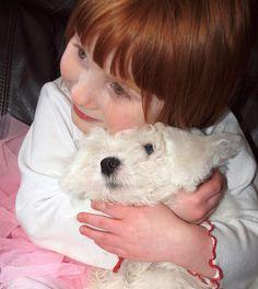 Red Head Child Hugs Bichon Frise Pup