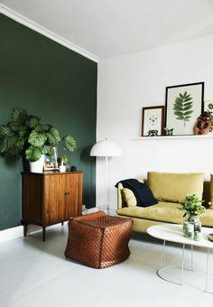 houseplants dekoideen living room design ideas retro look green accent wall