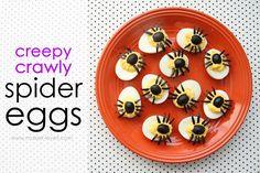 eitjes + olijfjes, zou dat helpen om over een spinnenangst te raken? @kleinste man