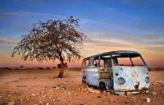 OLD & RUSTY ...but still BEAUTIFUL Decay Art, Volkswagen Bus, Campervan, Classic, Fun, Beautiful, Carport Garage, Adventure, Derby