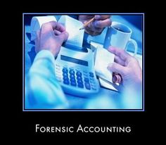Forensic Accounting Information Guide.