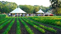 """""""Dinner at the Farm"""" summer dining event at Barberry Hill Farm in Madison, CT"""