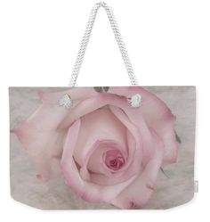 Rose Weekender Tote Bag featuring the photograph Pink Rose Beauty by Sandra . #rose #pinkrose #sandrafosterFoster