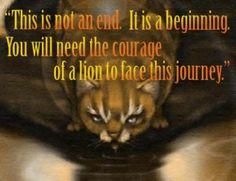 warrior cat quotes | Quote37.jpg