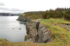 The beautiful km Skerwink Trail located near Trinity, Newfoundland is one of the best in the province for rugged coastal scenery including sea stacks. Newfoundland And Labrador, The Province, Coastal, Trail, Scenery, Hiking, Marvel, Bike, Water