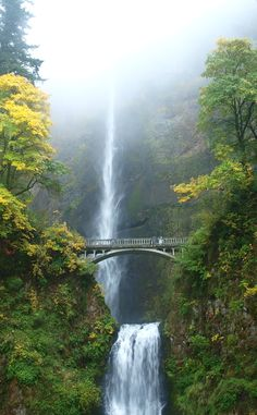 Multnomah Falls | Travel | Vacation Ideas | Road Trip | Places to Visit | Bridal Veil | OR | Natural Feature | Tourist Attraction | Scenic Point