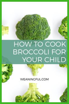 Want to find ways to cook broccoli easily and quick? Whether you want to cook it in the oven, on the stove or microwave, find out all the ways to make it tender and how to cook it carefully so that it doesn't turn into a complete mush. Healthy Finger Foods, Healthy Baby Food, Baby Finger Foods, Healthy Meals For Kids, Easy Healthy Recipes, Veggie Recipes, Baby Food Recipes, Baby Meals, Kid Meals