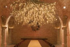Napa Valley Wineries - The 7 best wine caves in Napa/Sonoma ...