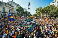 #CatalansVote9N