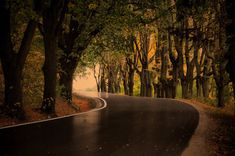 Showcase of Road and Path Photography: 50 Exquisite Shots - Hongkiat