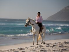 Horse Riding - Horse Riding on Noordhoek Beach, Cape Town, South Africa Trail Riding, Horse Riding, My Horse, Horses, Cottages Scotland, Beach Activities, Beach Villa, Horse World, Exotic Places