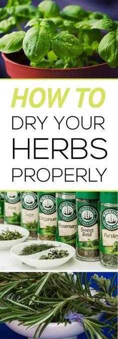 If you have an OVER abundance of herbs from your garden you can easily dry them and use throughout the coming months. Learn how to dry herbs correctly!