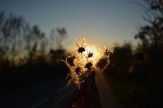 Тenderness of twilight by Petya Dimitrova on 500px
