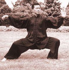 Ren Guang Yi  Tai Chi / TaiJi 太极