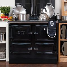 Esse 990 WD Wood Burning Boiler Cooker From Fireplace Products