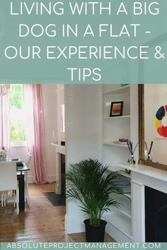 Are you thinking of adding a big dog to your home? There are some unique challenges presented when bringing a big dog to live with you, but having faced these head on, we've put together some tips Interior Garden, Interior Design, How To Pronounce Hygge, Utility Cupboard, Meet Friends, Protecting Your Home, Put Together, Working Area, Big Dogs