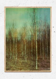Birches er designet af Dan Isaac Wallin | Just Spotted