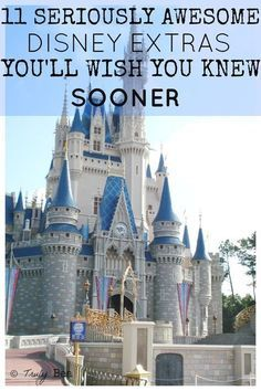 11 Disney World Extras you'll Wish you Knew Sooner. I am in LOVE with this article. I didn't know that DIsney offered most of these. I can't wait to add these to my next Disney trips!! I'm definitely doing number 5 and 9 on my next trip!