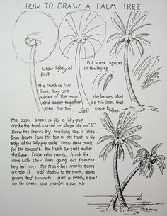 How to draw a palm tree (http://drawinglessonsfortheyoungartist.blogspot.com/2012/06/how-to-draw-palm-tree-lesson-worksheet.html)