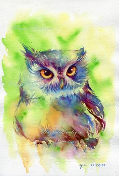 Watercolor Sketchbook, Watercolor Animals, Watercolor Pencil Art, Bird Paintings On Canvas, Cool Paintings, Owl Photos, Owl Pictures, Art And Illustration, Owl Artwork