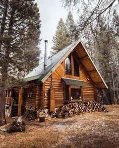 Ein Blockbohlenhaus im Wald. Finden Sie mehr Information auf https://www.pineca.de/blockbohlenhauser/
