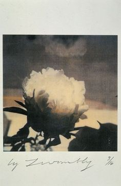Peonies Cy Twombly,  1980                                                       …