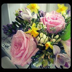 'O'Hara' garden roses and tiny daffodils! Roberts Flowers of Hanover, Hanover, NH