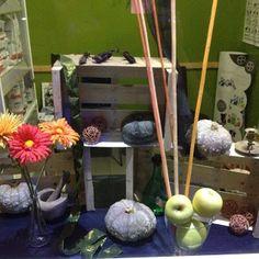 Escaparate de Halloween 2014 Centre Veterinari Bitxos- Halloween Window Display in a Vet Center