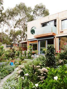 Judy Sederof's overachieving garden in Brunswick! Photo – Annette O'Brien for…