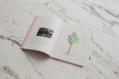 Guy Yanai — Ancienne Rive Catalogue — designed by Aurore Chauve