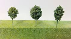 Architectural model maker Miwa Fukui explains how to make a realistic foam tree in 6 simple steps.