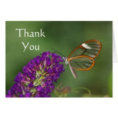 They call me Clear-wing Thank you Card - animal gift ideas animals and pets diy customize