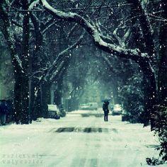 winter memoire by eszter valy a.k.a. valyeszter