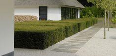 Garden in Noord-Holland by Andrew Van Egmond