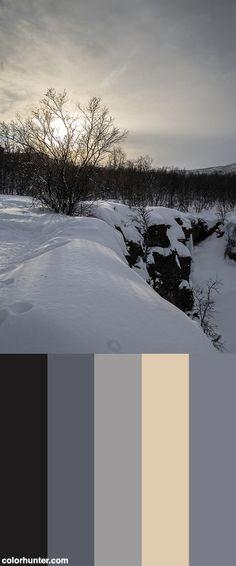 20160227_130613 Color Scheme from colorhunter.com