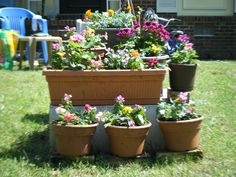 trying to hide the ugly septic tank cover in my front yard with random pots i already had ehhh it gets the job done - Garden Ideas To Hide Septic Tank