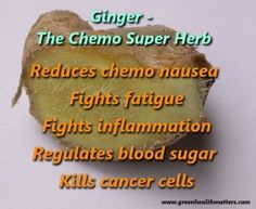 Ginger has six amazing benefits for helping to combat chemo side effects, You can use ginger during and after chemo. Add ginger to your treatment plan today. lots of benefits for battling cancer. Foods For Cancer Patients, Cancer Fighting Foods, Cancer Cure, Lung Cancer, Cervical Cancer, Chemo Treatment, Cancer Treatment, Chemo Side Effects, Chemotherapy Side Effects