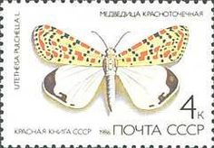 Buy and sell stamps from USSR. Meet other stamp collectors interested in USSR stamps. Sell Stamps, Stamp Catalogue, Butterfly, Russia, The World, Stamps, Russian Folk, Hunting Dogs, Bowties