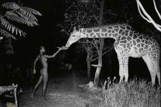 Giraffe & Mademoiselle