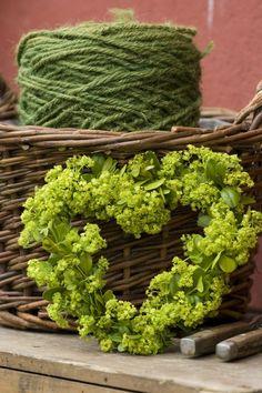 For garden lovers...a green heart