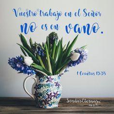 1 Corintios 15:58 Así que, hermanos míos amados, estad firmes y constantes, creciendo en la obra del Señor siempre, sabiendo que vuestro trabajo en el Señor no es en vano.