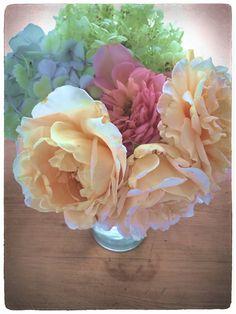 rosees & hydrangea from my garden