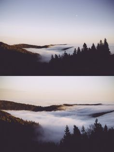 dawn // sunset // monroeville // aesthetic // ambience // earth // natural // inhabited