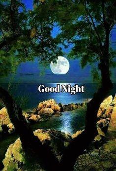 Good Night Msg, Good Night I Love You, Good Night Prayer, Good Night Friends, Good Night Blessings, Good Night Messages, Good Night Wishes, Good Night Sweet Dreams, Good Night Quotes