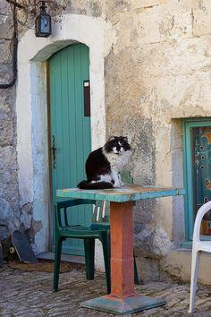 Gardien du temple, Lacoste, France