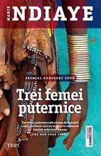 """""""Romanul lui Marie NDiaye răspândește o vrajă hipnotică."""" The Independent Roman, Feminism, Comic Books, Baseball Cards, Digital, Cover, Sports, Literatura, Hs Sports"""