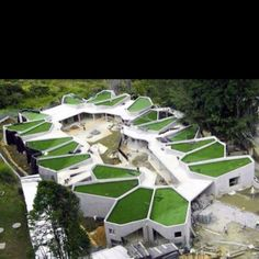 Green roof tops/architecture