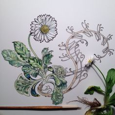 roots up! Plant Sketches, Flower Sketches, Drawing Flowers, Botanical Art, Botanical Illustration, Illustration Art, Arm Sleeve Tattoos, Pen And Watercolor, Doodle Drawings