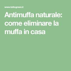 Antimuffa naturale: come eliminare la muffa in casa
