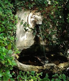 A small stone wall fountain tucked into greenery Le Potager Home and Garden